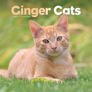 Ginger Cats 2021 Calendar