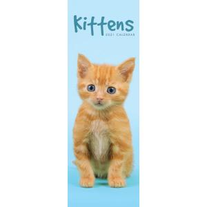 Kittens 2021 Calendar