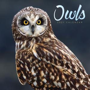 Owls 2021 Calendar