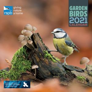 RSPB Garden Birds 2021 Calendar