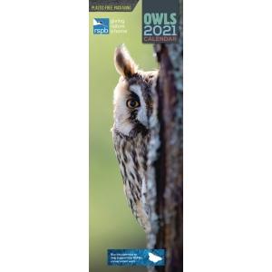 RSPB Owls 2021 Calendar