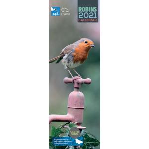 RSPB Robins 2021 Calendar