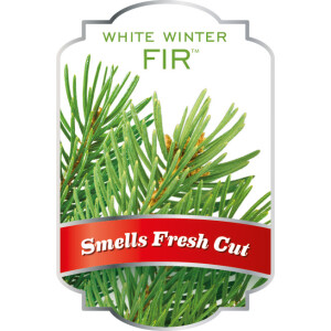 ScentSicles White winter fir Christmas tree scent decoration
