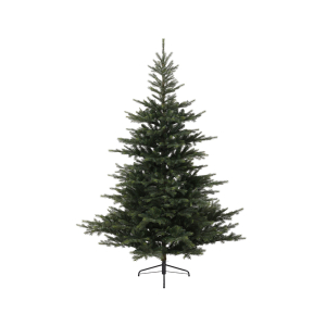 Rivington 6ft Spruce Tree