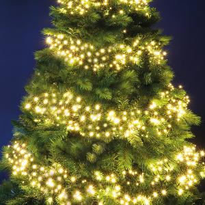720 LED Cluster Lights – Warm White