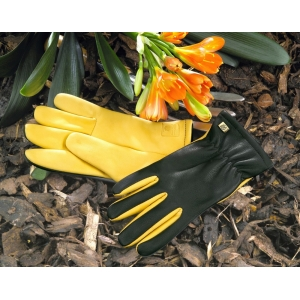 Gold Leaf Dry Touch Ladies Gardening Gloves