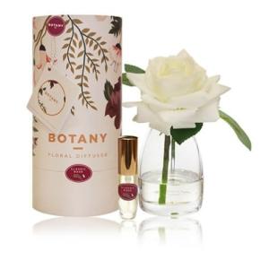 Botany 1 Rose Diff White Rose