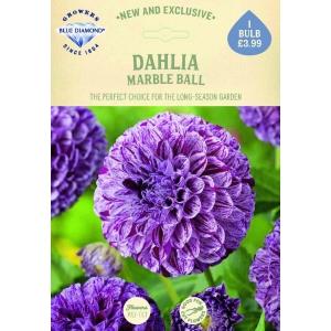 Dahlia Marble Ball