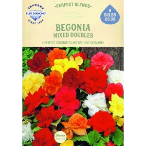 Begonia Mixed Doubles