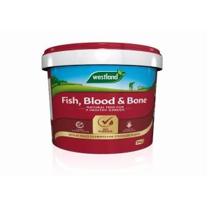 Fish Blood + Bone