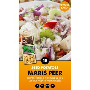 Seed Potatoes – Maris Peer