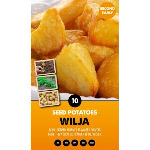 Seed Potatoes – Wilja