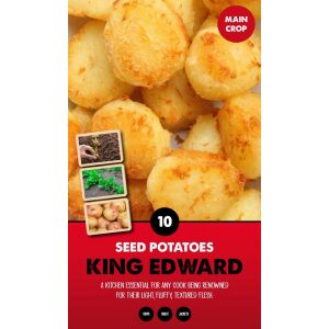 Seed Potatoes – King Edward