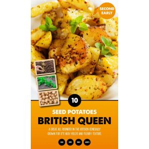 Seed Potatoes – British Queen