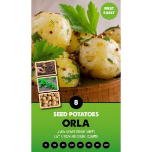 Seed Potatoes – Orla
