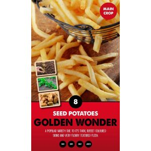 Seed Potatoes – Golden Wonder