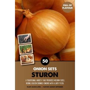 Onion Set – Sturon