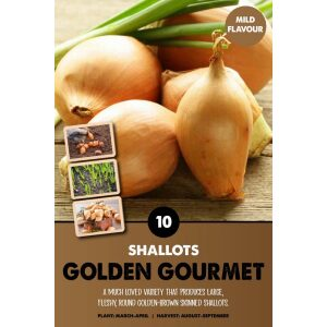 Shallot Set – Golden Gourmet