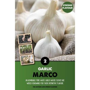 Garlic Set – Marco