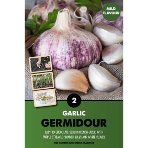 Garlic Set – Germidour