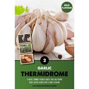 Garlic Set – Thermidrome