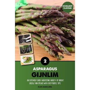 Asparagus – Gijnlim