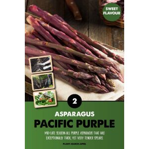 Asparagus – Pacific Purple