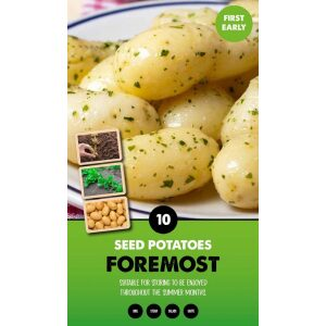 Seed Potatoes – Foremost