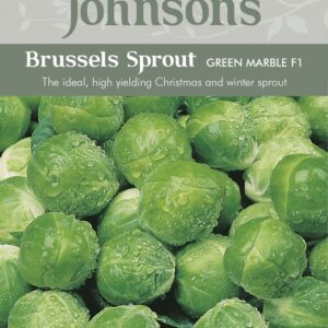 Brussels Sprout Green Marble F1 JAZ