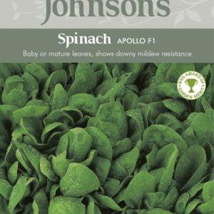 Spinach Apollo F1 JAZ
