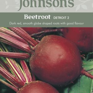 Beetroot Detroit 2 JAZ