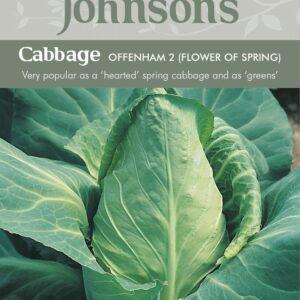 Cabbage Offenham 2 Flower of Spring JAZ