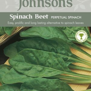 Spinach Beet Perpetual Spinach JAZ