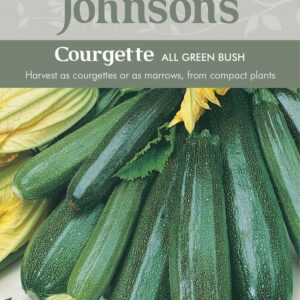 Courgette All Green Bush JAZ