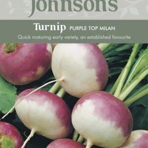 Turnip Purple Top Milan JAZ