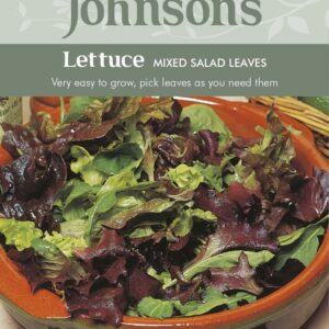 Lettuce Mixed Salad Leaves JAZ