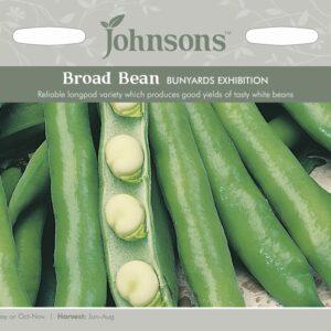 Broad Bean Bunyards Exhibition JAZ