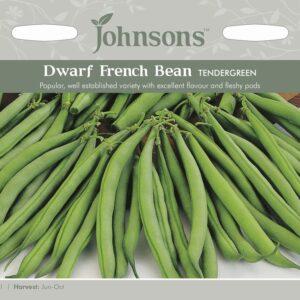 Dwarf French Bean Tendergreen JAZ