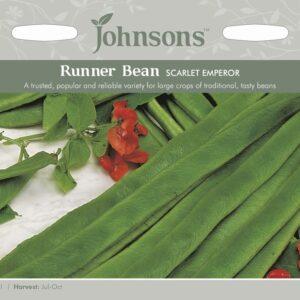 Runner Bean Scarlet Emperor JAZ