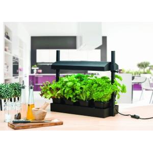 Micro Grow Light Propagator