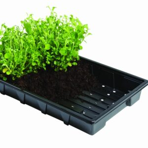Professional Seed Trays 5pk