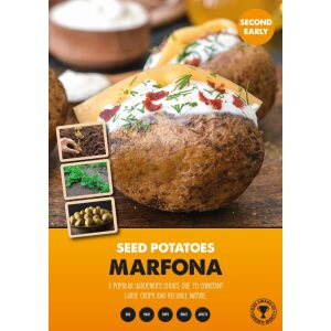 Seed Potatoes – Marfona