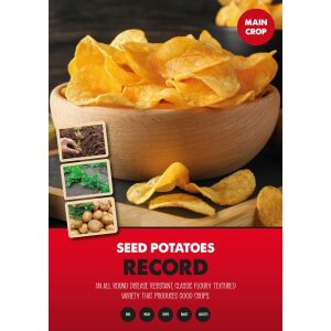 Seed Potatoes – Record