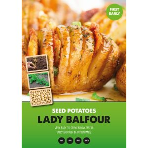 Seed Potatoes – Lady Balfour