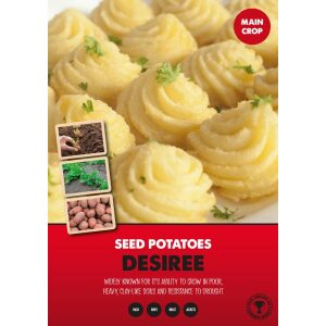 Seed Potatoes – Desiree