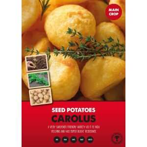 Seed Potatoes – Carolus