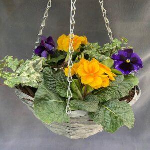 Seasonal Hanging Basket 12in