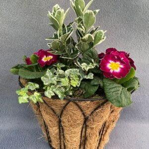 Wall Basket Small