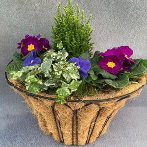 Wall Basket Small Medium