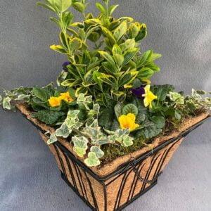 Metal Square Hanging Basket 35cm